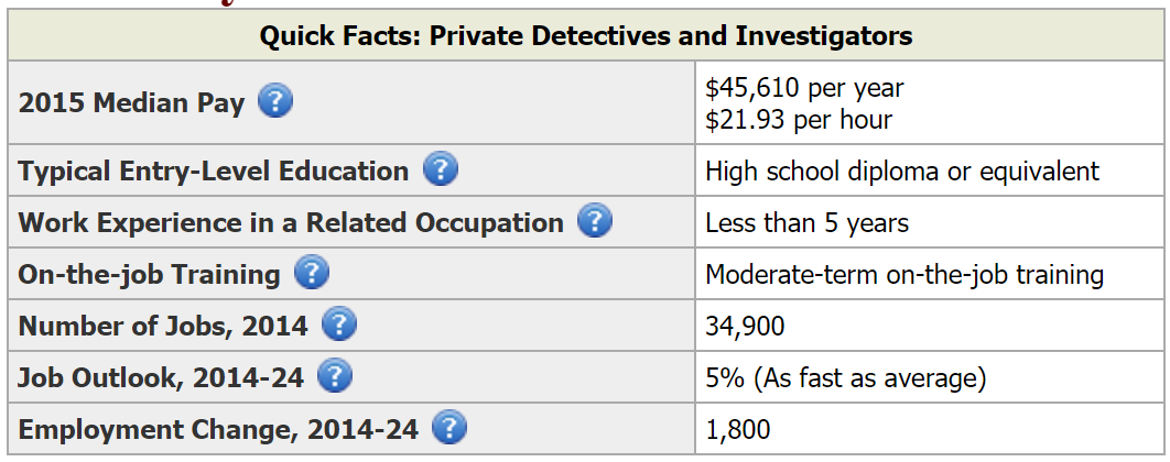 Private detective career summary